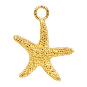 iXXXi Bedel Sea Star Goud C4301399001