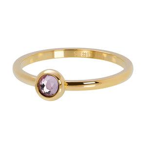 iXXXi ring Zirkonia Pink Goud 2mm R04107-01