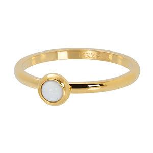iXXXi ring 1 Bright White Goud 2mm R04108-01